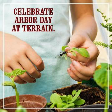 CELEBRATE ARBOR DAY AT TERRAIN ON FRIDAY, APRIL 26