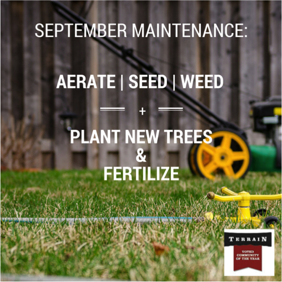 SEPTEMBER LAWN AND YARD TIPS