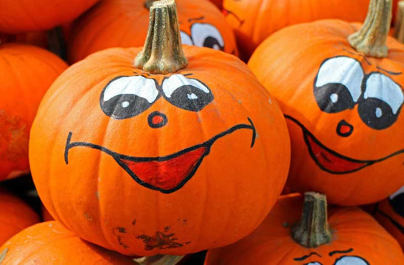 Halloween Events Near Terrain: Haunted Houses, Costume Contests & More